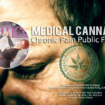 "danceScape at ""Medical Cannabis"" Chronic Pain Public Forum"