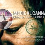 """danceScape at """"Medical Cannabis"""" Chronic Pain Public Forum"""